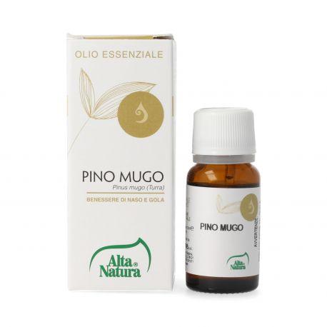 Pino Mugo